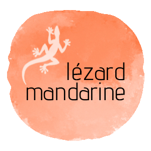 Lézard Mandarine Déco